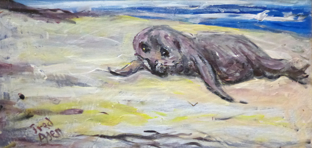 Fred Adell - Wildlife Artist Mammals - Pinnipeds (seals, sea lions, walrus) Acrylic