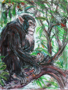 Fred Adell - Wildlife Artist Mammals - Primates Mixed Media on Illusration Board