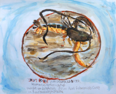 Fred Adell - Wildlife Artist Crustaceans Mixed Media (Ink, watercolor, tempera), bristol board