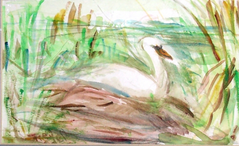 Fred Adell - Wildlife Artist Works on Paper watercolor on paper