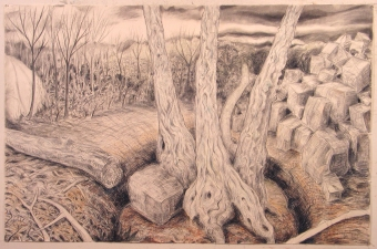 Gabrielle Barzaghi                     DRAWINGS Dogtown (Woodlands) Charcoal, conte, graphite, and pastel