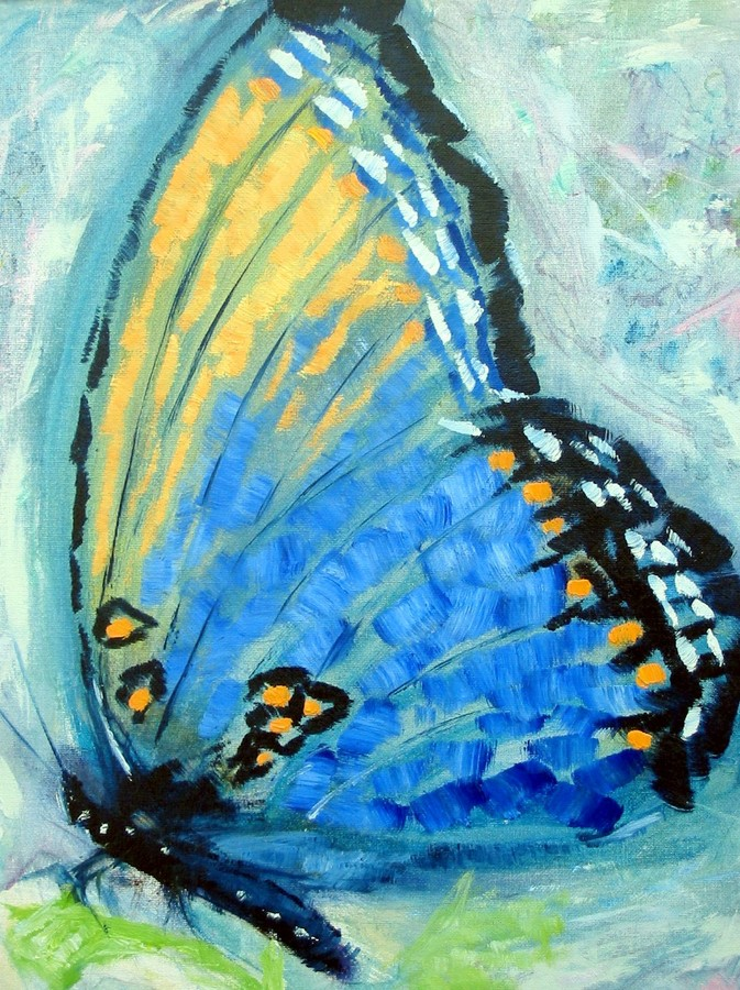 Miscellaneous Tiger Butterfly
