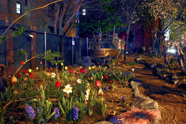 George Hirose Midnight in the Garden: Photographs from the Community Gardens of the East Village and Lower East Side (click on images to enlarge)