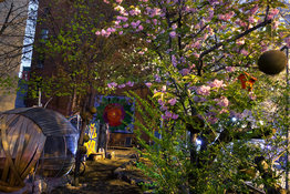 George Hirose Midnight in the Garden: Photographs from the Community Gardens of the East Village and Lower East Side (click on image to enlarge)