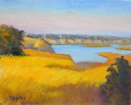 GEORGE TAPLEY (home)          Back Bay & Newport Beach oil on panel