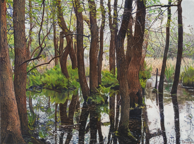 "- Main Artwork / Recent Paintings ""Meatrack Swamp"""