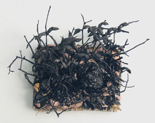 Gilda Pervin Wall Sculpture 1 Burlap, cement, acrylic paint, found objects, twigs, seed pods,coal, grit particles,