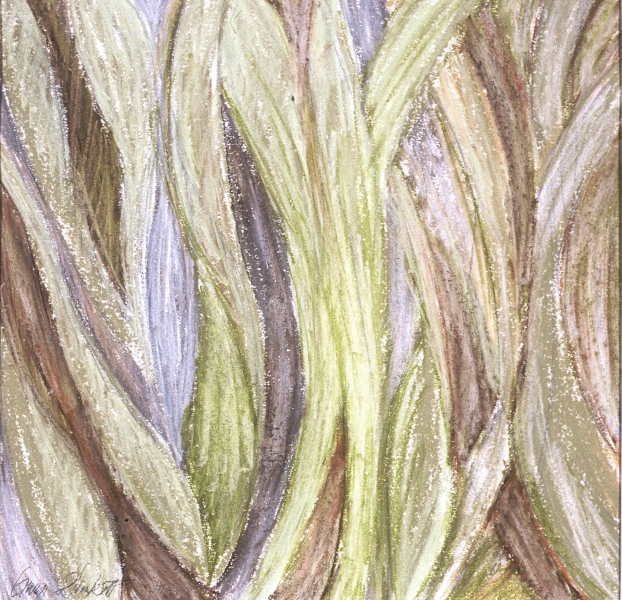 Work on paper-Dry media Collections/Lines Grass Pastel