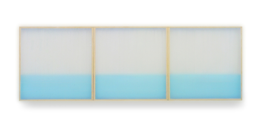 HEATHER  HUTCHISON WORKS 2000's Plexiglas, Beeswax, Enamel, Pigment
