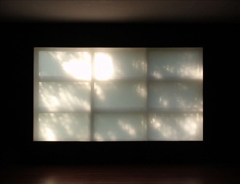 RECENT WINDOW INSTALLATIONS Video: Black and Light (2007)