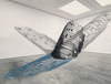 Anamorphic Installations Photoshop Collage