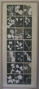 Helen Ireland Archive 3 Paper cuts Cut paper