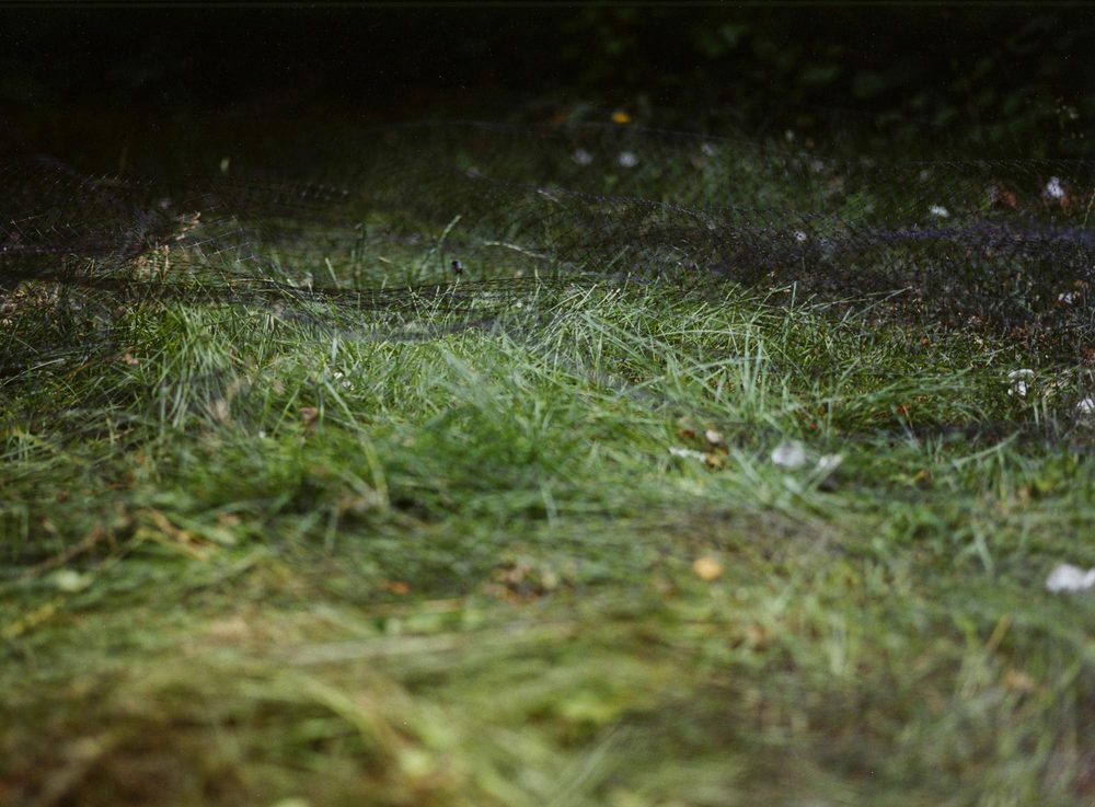 SOLID GROUND Net, 2004, C-print.