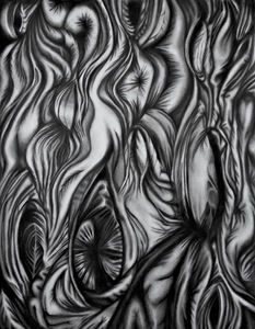 Jackie Skrzynski As Within, So Without charcoal on paper