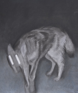 Jackie Skrzynski Trail Cam charcoal and pastel