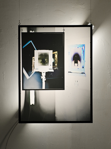Jacob Lawrence Mandel Contradiction, Evolution, Placebo digital photograph printed on matte film installation, 12/2 mc wire, 2ft fluorescent light