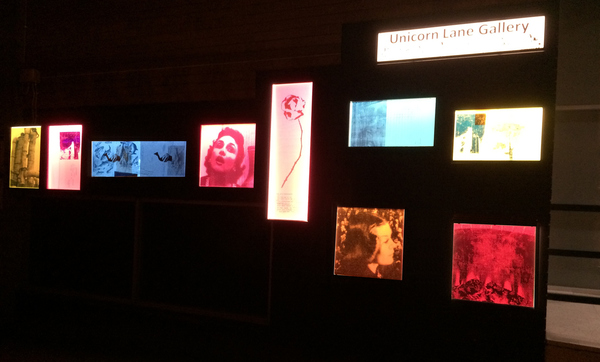 Public Art Lightbox Installation of individual prints on perspex