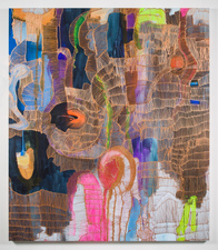 Jaime Scholnick New Paintings  Acrylic on canvas