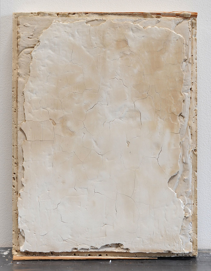 JAMES BUSS 2015-2016 plaster, wood