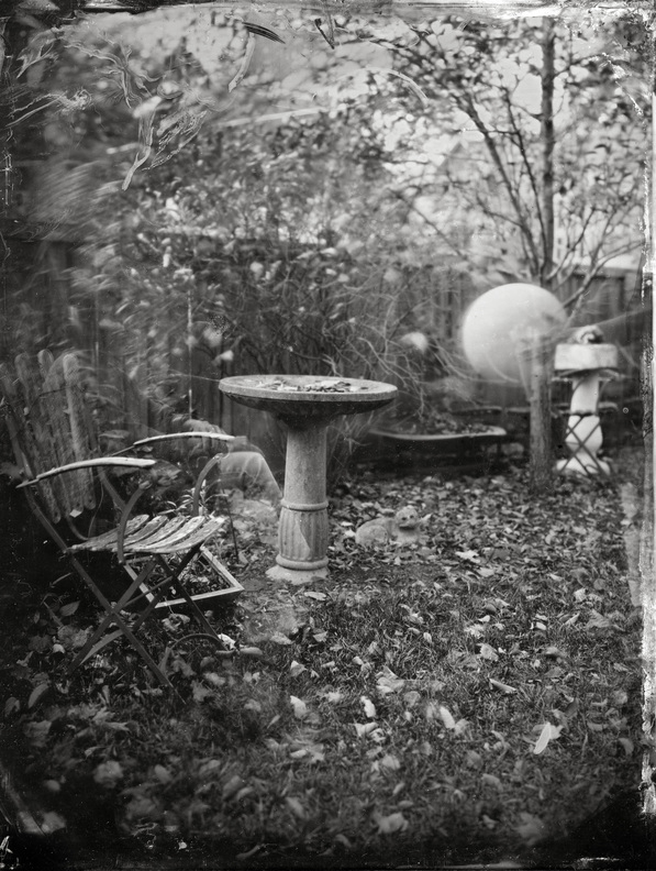 Orbs in Horto Ambrotype