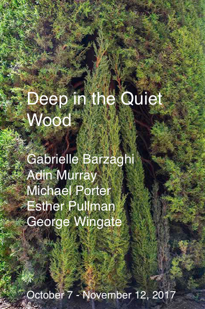 Jane Deering Gallery Deep in the Quiet Wood