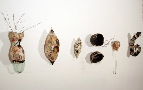 Sculpture/Installation  formed rice paper, ink, plastic