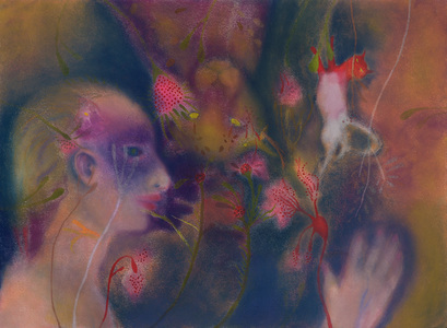 JAN HARRISON Animals in the Anthropocene, Pastel/Paper Paintings 1993-2018  pastel, charcoal, ink and colorpencil on rag paper