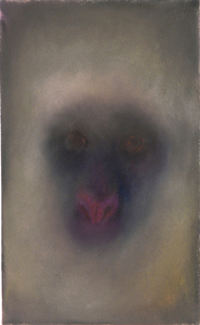 JAN HARRISON The Corridor Series Primates/Birds 2009-2011 Charcoal, pastel and ink on rag paper