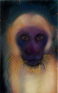 JAN HARRISON The Corridor Series Primates/Birds 2009-2011 Pastel, charcoal and ink on rag paper