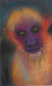 JAN HARRISON The Corridor Series - Primates/Birds 2009-2011 Pastel, charcoal and ink on rag paper