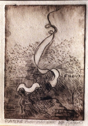 Janina Ciezadlo The History of the Knot lexan drypoint