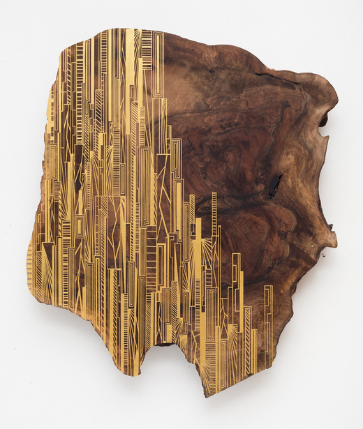 JASON MIDDLEBROOK wall works Acrylic on Walnut