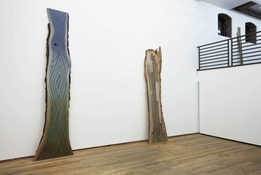 Jason Middlebrook Exhibition Images