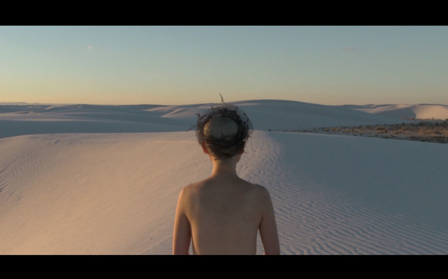 Crown of Thoughts<br>White Sands, New Mexico 2014<br>