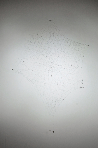 Individual Works The Web, 2007
