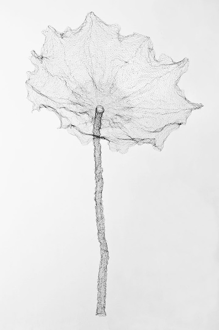 Individual Works The Lotus Leaf, 2013