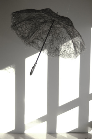 The Umbrella, 2007