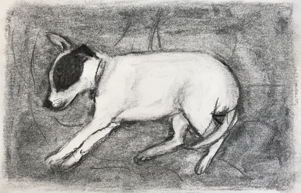 Jean Smith The dogs charcoal