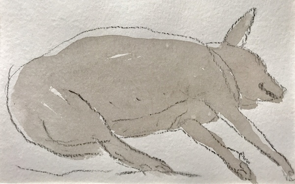 Jean Smith The dogs Ink wash, crayon