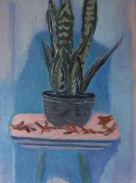 painting Snake plant