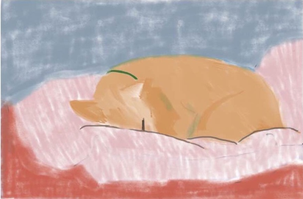 Jean Smith iPad drawing