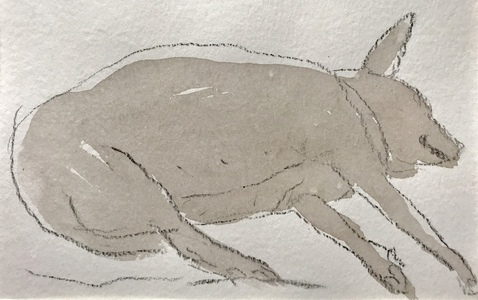 The dogs Ink wash, crayon