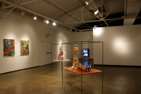 Solution Installation View