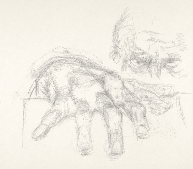 Paintings and drawings of my left hand Study of left hand (with head) (B 04/07)