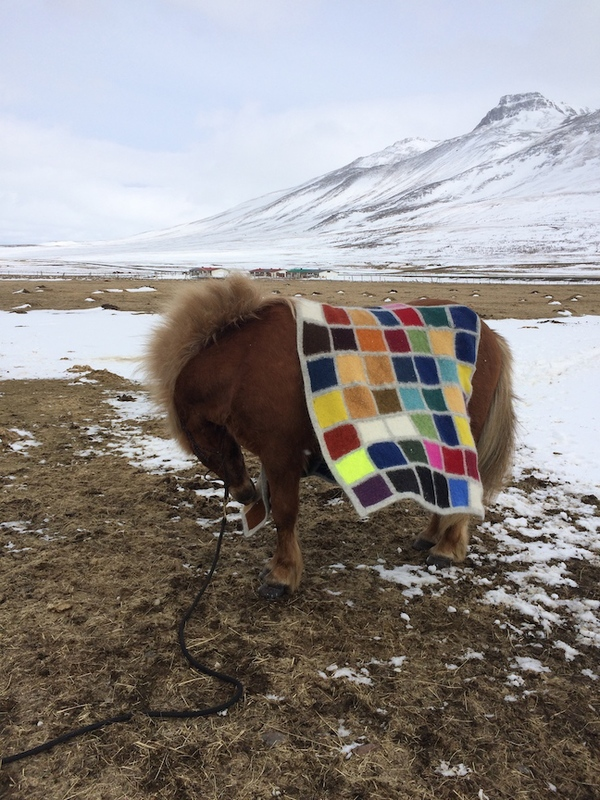 J E N   P E P P E R  2015 . Development of Color Ranges through the Ages Icelandic wool knit, felted + worn