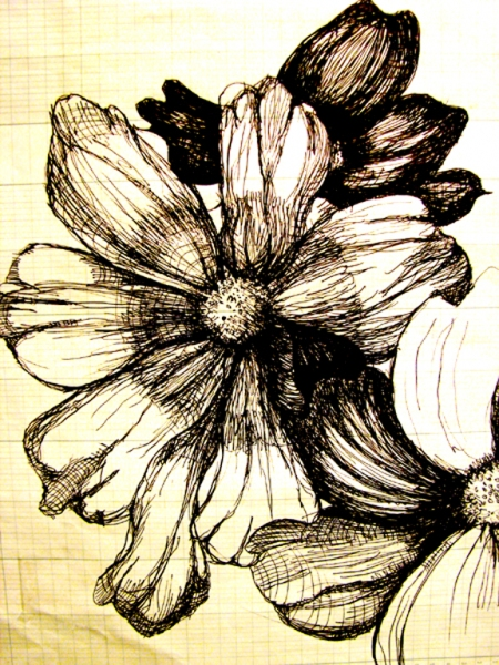 Jerelyn Hanrahan Schwartz Blumen  ink on paper