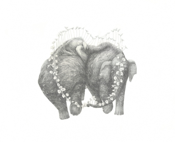 "Jillian Dickson (Ludwig) ""HIGHLY EMBARRASSING SAPPY SHIT, I MAKE NO APOLOGIES"" 2009-10 Graphite on Paper"