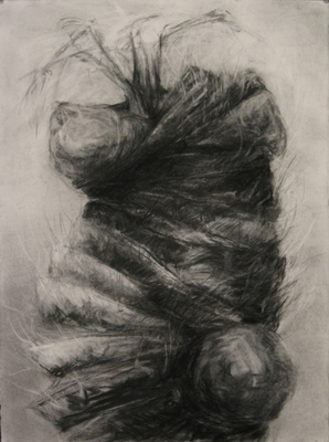 "Jillian Dickson (Ludwig) Charcoal Drawings: ""TUMORS, PLANTS"""