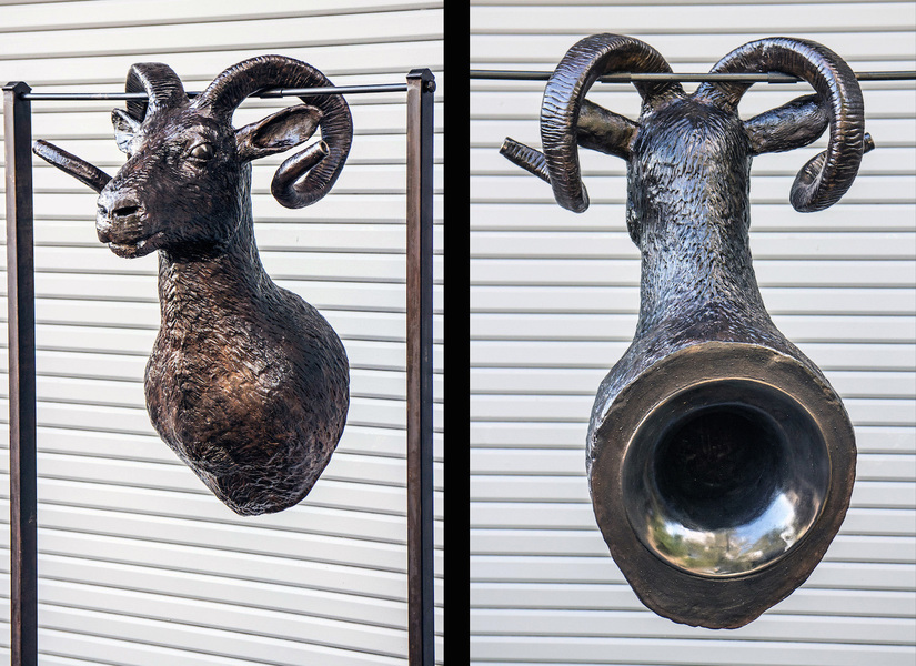 Indoor Sculpture Ram Horn