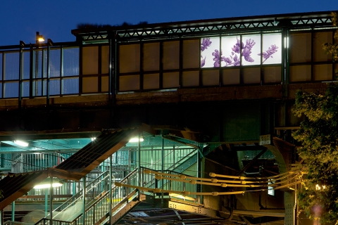JOAN LINDER Flora of Bensonhurst - MTA Permanent Public Artwork Laminated Glass